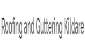 Roofing and Guttering Repairs Kildare